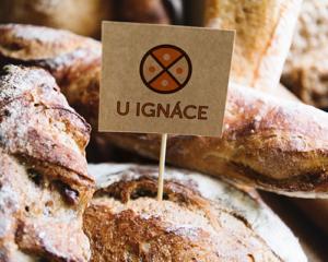 U_Ignace